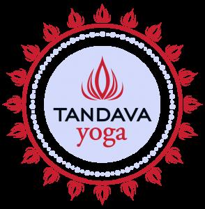 Tandava Yoga Logo Brand Identity Design New Logo
